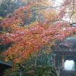 秋色染まる大窪寺