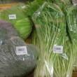 冬野菜が増えてきました♪