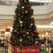 クリスマスツリーが飾られました