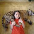 タイガーキングダムの子トラが可愛い❤
