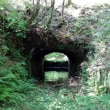5月3日 鹿児島観光4日目・・・曽木の滝