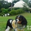 観音崎公園は見どころ満載!