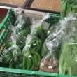 今週の星農園のお野菜は。。。