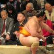 大相撲春場所中盤戦