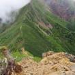 イワベンケイ・阿弥陀岳登山(南八ヶ岳)