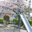 平日の公園