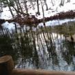神の子 池、網走湖:前編