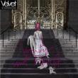 Velvet Condom - Vanity and Revolt 2013年