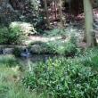 東山植物園...1 ♪