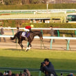レース回顧&現地レポート:有馬記念(2010)
