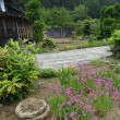 庭の様子⑤