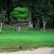 久しぶりに関門菊川ゴルフクラブのナイターゴルフに行ってきたんです~