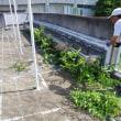 河合第三小のプールの清掃作業
