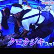 6/18 先週かVSに出た長瀬さん 海釣りをかなりやっている