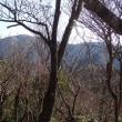 鈴鹿 秘境のお山第2弾 Ⅱ  向山~イハイガ岳~雨乞岳