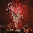 今年見る初めての花火