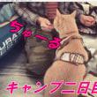 猫連れ紅葉キャンプ二日目【猫日記こむぎ&だいず】2017 11 12