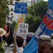 沖縄県民大会に呼応する8.11首都圏大行動 デモに参加 写真14枚