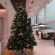 クリスマスツリーをだしました☆