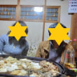 カントリークラブ・ザ・レイクス(17/12)