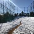1月24日…積雪の為休業します