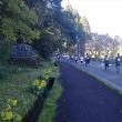 第9回つわぶきハーフマラソン 飫肥の街並みを走る