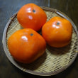 東京のブランド柿「東京紅」