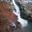 ビブラムファイブフィンガーズをはいて稲武の紅葉見物