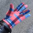 フリースの手袋、