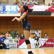 Vリーグ2017/18 久光製薬スプリングス アキンラデウォ 選手