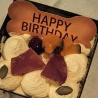 Happy Birthday to ミュート