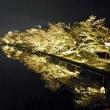 弘前城の夜桜は日本一!