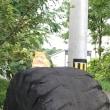 タイヤのネコ