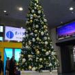福岡タワーもクリスマス