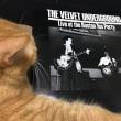 The Velvet Underground/Live at Boston Tea Party