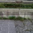 川下散歩2