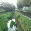 【早朝のお散歩】 18/7/23 風が流れて