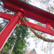 「神の元へ」 いわき 三島八幡参道にて撮影! 桜の紅葉と鳥居