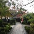 雨のお寺と久々の再会