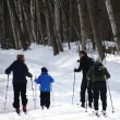 続・森のスノーパーク Continuation of the forest's snow park