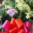 素敵な贈り花