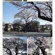 埼玉-612 久喜東一公園
