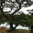 高松 栗林公園の今