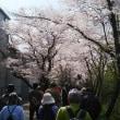 阪急・のせでん合同ハイキングに参加しました