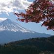コーヒータイム ~ 富士山365日 ~
