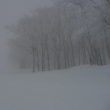 スキー 2018/02/05
