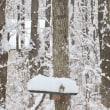 雪❄︎それから〜〜