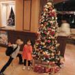 デズニ―ランド 一日目 岡山→パーム&ファウンテンテラスホテル 2014.11.07 「195」