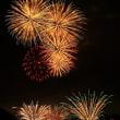 岐阜県川辺町の水上花火