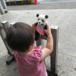 パンダちゃん日和